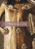 Light Brown Crinkle Chiffon Suit