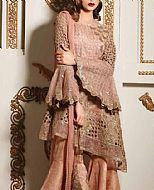 Tea Pink Net Suit