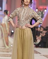 Beige/Golden Net Suit- Pakistani Party Wear Dress