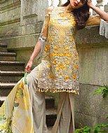 Beige/Yellow Net Suit