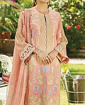 Peach Cotton Net Suit- Pakistani Chiffon Dress