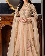Light Golden Net Suit- Pakistani Party Wear Dress