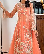 Coral Net Suit- Pakistani Formal Designer Dress