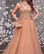 Peach Net Suit- Pakistani Party Wear Dress