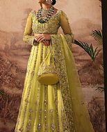 Lime Green Organza Suit- Pakistani Wedding Dress