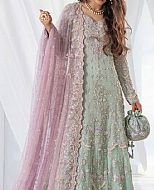 Mint Green Crinkle Chiffon Suit- Pakistani Wedding Dress