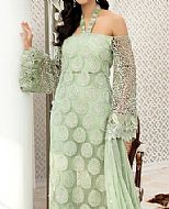Mint Green Chiffon Suit- Pakistani Chiffon Dress