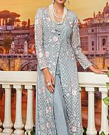 Grey Net Suit- Pakistani Designer Chiffon Suit