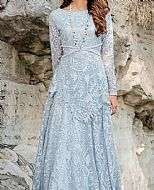 Baby Blue Net Suit- Pakistani Chiffon Dress