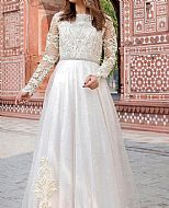 White Net Suit- Pakistani Chiffon Dress