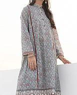 Silver Bamboo Suit (2 Pcs)- Pakistani Winter Clothing