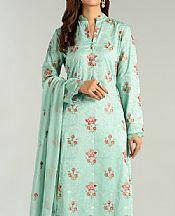 Mint Green Karandi Suit- Pakistani Winter Dress