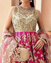 Magenta Net Suit- Pakistani Chiffon Dress