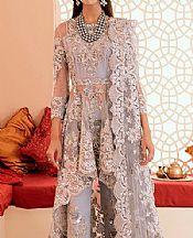Light Grey Net Suit- Pakistani Chiffon Dress