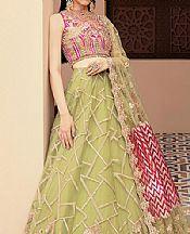Apple Green/Magenta Net Suit- Pakistani Designer Chiffon Suit