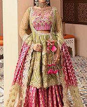 Apple Green/Magenta Net Suit- Pakistani Chiffon Dress