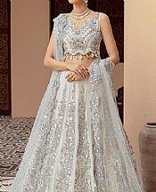 Light Grey Net Suit- Pakistani Designer Chiffon Suit