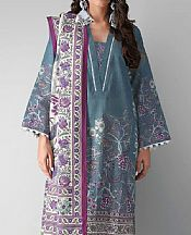 Sky Blue Khaddar Suit (2 Pcs)- Pakistani Winter Dress