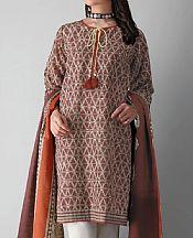 Brown Khaddar Suit (2 Pcs)- Pakistani Winter Dress