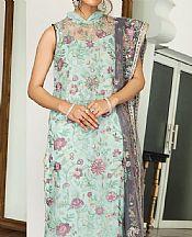 Mint Green Net Suit- Pakistani Chiffon Dress