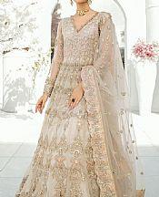 Ivory Net Suit- Pakistani Chiffon Dress